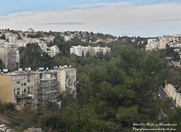 haifa-fires-30-november-2016-c