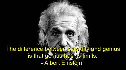 michael shine albert-einstein-quotes-sayings-wise-stupidity-genius
